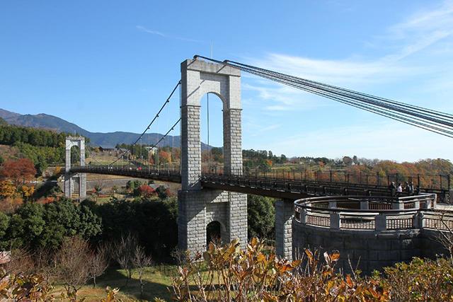 「風の吊り橋」を駆け抜ける!